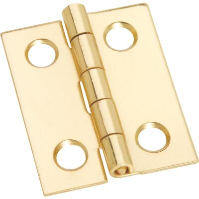 National 1 In. x 13/16 In. Medium Clear Coat Decorative Hinge